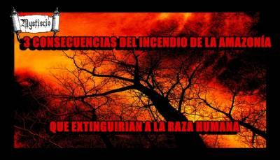 Tres Consecuencias Del Incendio De La Amazonía Que Extinguirían A La Raza Humana