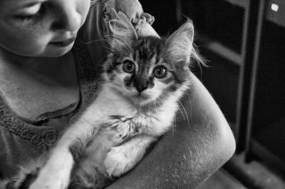 ¿Sabéis sobre los beneficios de tener una mascota con niños?