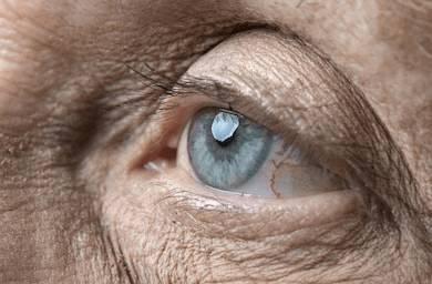 Estudios recientes demuestran que la inmortalidad ya no es una utopía