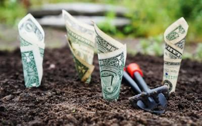 5 fuentes de ingresos pasivos que podemos construir con el tiempo -
