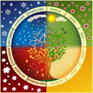 Los Meses del Año en Inglés y su Origen