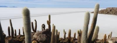 Guía y faqs: Organizar tour al Salar de Uyuni