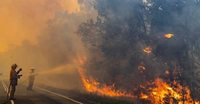 Acorde con la vida: 'Los Efectos Nocivos de los Incendios en Australia'