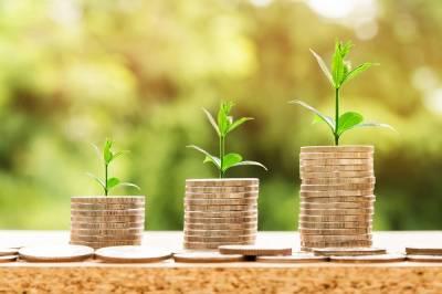 Economía circular: Una estrategia para las empresas ecológicas