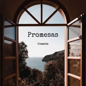 Microcuento: 'Promesas'