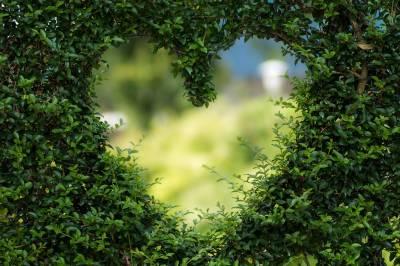 El jardín secreto de la poesía: Eros, Apolo y Dafne