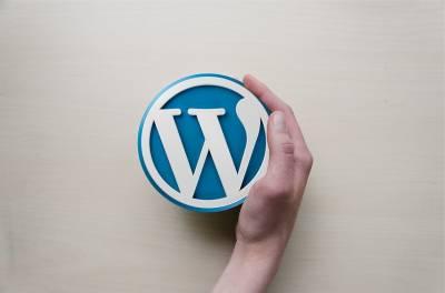 Personalizar login de WordPress | Diseñador UX/Web Pedro De la nube