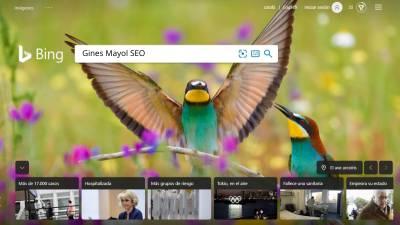Como clasificar tu web mucho mejor en Bing