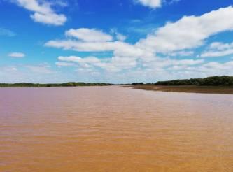 Paseo por el Delta del Tigre - desde Buenos Aires
