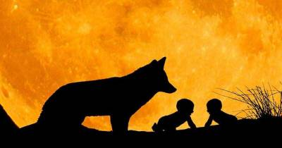 Una ventana a mi aula: Historia de Roma para niños