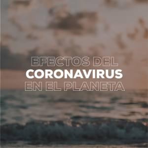 ¿Cuáles son los efectos del coronavirus en el planeta?