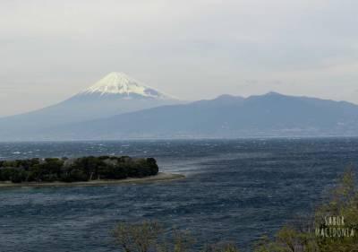 La península de Izu en Japón. Un lugar diferente para visitar fuera de las rutas turísticas