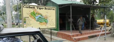 Safari en India: 3 días buscando tigres en el Parque Nacional Corbett