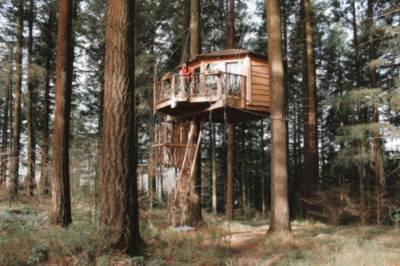 Zuhaitz etxeak (Cabañas en los árboles)