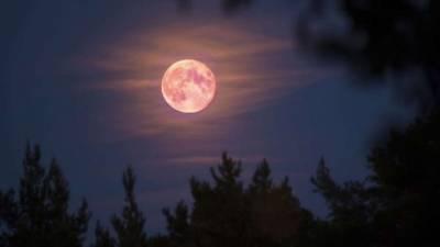 A Orillas De La Luna
