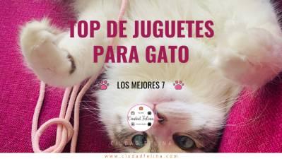 Los 7 mejores juguetes para Gato