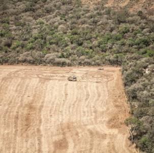 Greenpeace denuncia el aumento de la deforestación en Chaco durante la cuarentena
