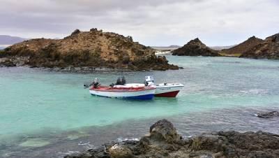 Vacaciones en familia en Fuerteventura: destino idílico