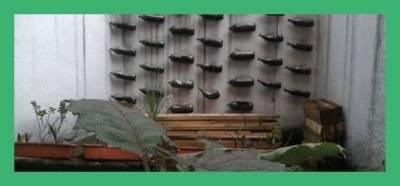 Horticultura Para La Seguridad Alimentaria