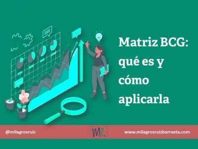 Matriz BCG: qué es y cómo aplicarla - Milagros Ruiz Barroeta
