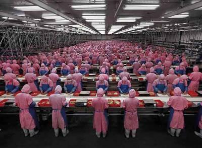 Sociología Del Trabajo: La Fábrica, La Iglesia Capitalista