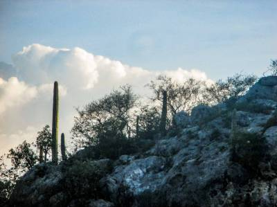 Camino Al Monte (2)