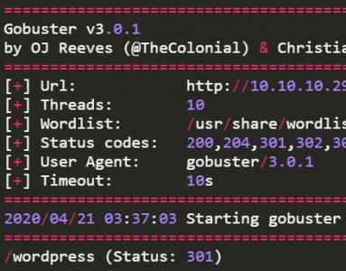 Escanear paginas web y sus directorios con Gobuster