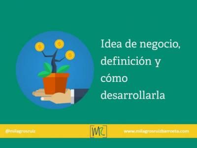 Idea de negocio, definición y cómo desarrollarla - Milagros Ruiz Barroeta
