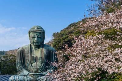 La enseñanza de Buddha - Artemision