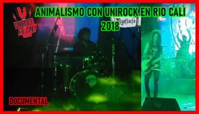 Animalismo Con Unirock En Rio Cali