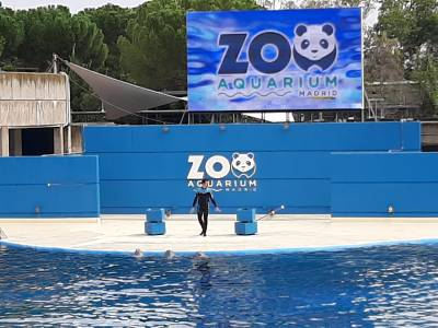 Planes con niños: Un día en el Zoo de Madrid - Mamá de un prematuro