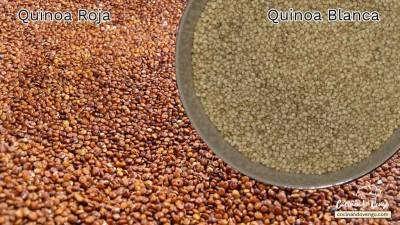 Quinoa o quinua, un superalimento excelente | Cocinando Vengo