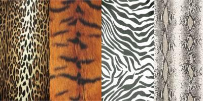 La tendencia que no pasa de moda, el Animal Print » Blog de Moda y Belleza I  ByAlejandrA I