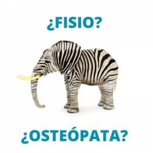 Diferencias entre el osteópata y el fisioterapeuta