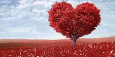 Poesía para enamorar a una mujer