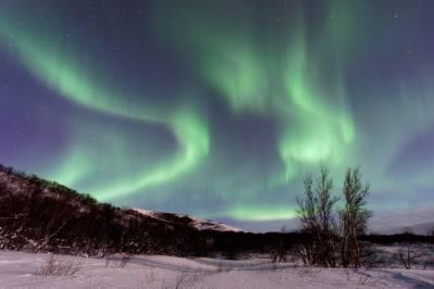 Qué ver y que hacer en Islandia - Planyts