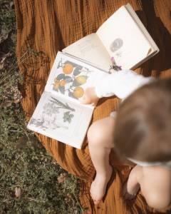 Los mejores libros sensoriales Montessori [Libros de 2021] Educacon