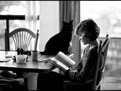 Arte 'En los estantes de una biblioteca de una biblioteca, vi un mundo asomando en el horizonte' Jack London
