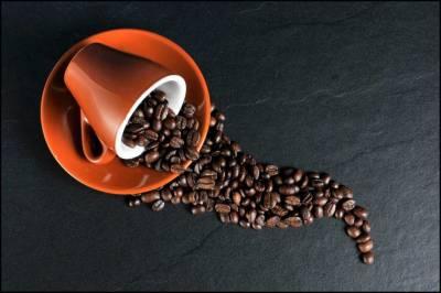 Todo lo que no te han contado del café