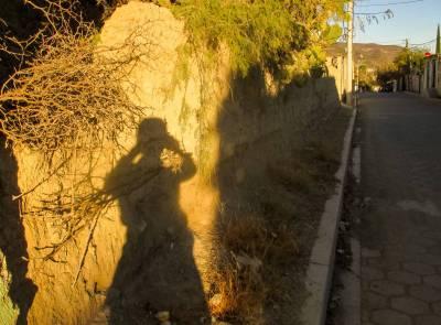 En Busca De Las Sombras Amarillas