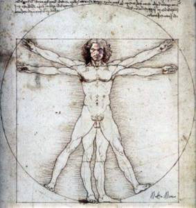 Anatomía De Un Vampiro Novato