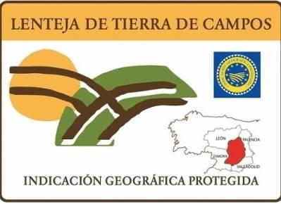 fFinalista del VII Concurso de Microrrelatos Lenteja de Tierra de Campos