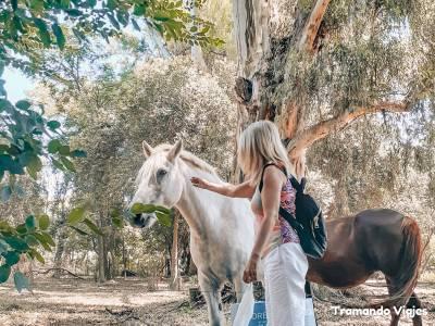Qué visitar en Carmen de Areco - Tradición del campo en Argentina