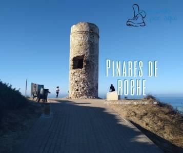 Ruta por los Pinares de Roche - Caminando por aquí