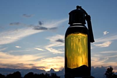 El Aceite De Argán : Sus Beneficios