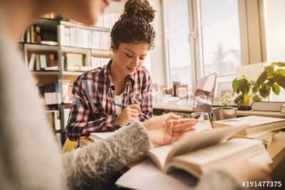 Mejores trabajos online para estudiantes - Bloguero Pro