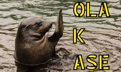 OLA K ASE – Un Elfo Llega a Twitch