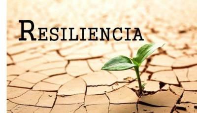 Los principios sobre la medición de la resiliencia
