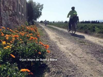 Delta del Llobregat en bicicleta