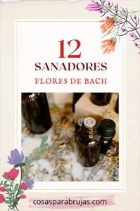 Las Flores de Bach: Los 12 sanadores y sus beneficios